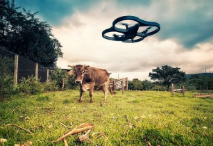 World Food Day: realising the life-saving and commercial potential of drones in agriculture