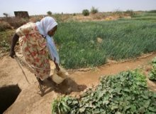US Trade Mission seeks to expand African agribusiness cooperation