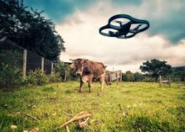 The future of artificial intelligence in agricultural sector