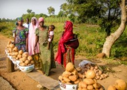 Boosting food and nutrition security and rural incomes in Burundi