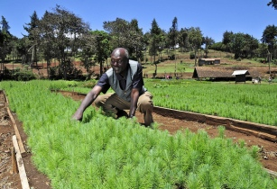 Bayer, Yara join to hands to deliver technology to farmers