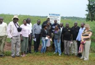 East Africa�s agri potential: The new frontier for food and grain production