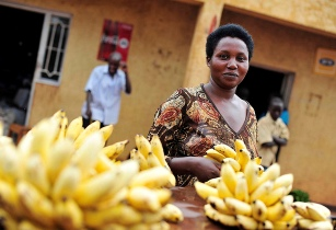 Rwanda to build banana processing plant in Gisagara