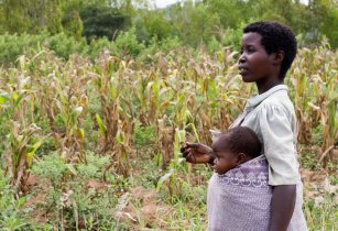 Woman farmer and baby Malawi