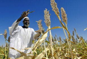 Zimbabwean farmers receive US$38mn funding for farming equipment