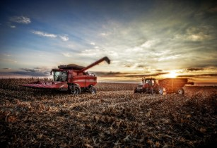 case IH FLickr