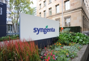 Senegalese farmers are achieving strong yield increases with Syngenta Apron Star programme