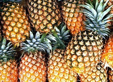 The Kenya government has commissioned the construction of a US$600,000 modern pineapple processing factory in Bureti District, South Rift Valley