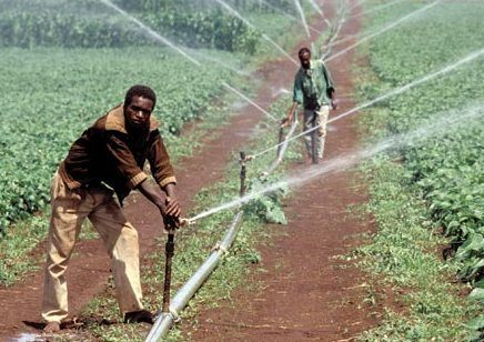 Global demand for Africa's land affecting local water cost