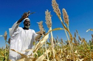 African farming online portal 1.2mn Africa Renewal