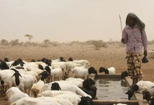 Pastoralist in Kenya - Oxfam International - Flickr
