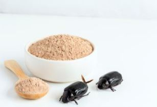beetle powder